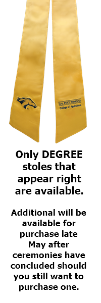 Degree Mini Stole