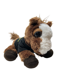 "Grad Plush Dreamy Eyes Horses Pony ""Cal Poly Pomona Grad"""