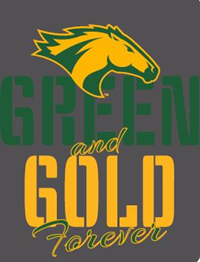 VALUE SALE TEE GREEN & GOLD FOREVER