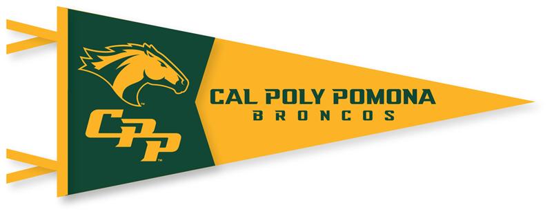 Image result for cal poly pomona broncos logo