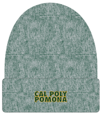Beanie Roll Two-Tone Classic On Dk Green Heather