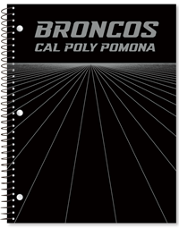 1 Sub Imprinted Broncos CPP Rays Black