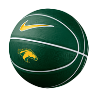 Mini Basketball Green With Gold Lines