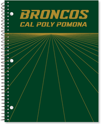 1 Sub Imprinted Broncos CPP Rays Green